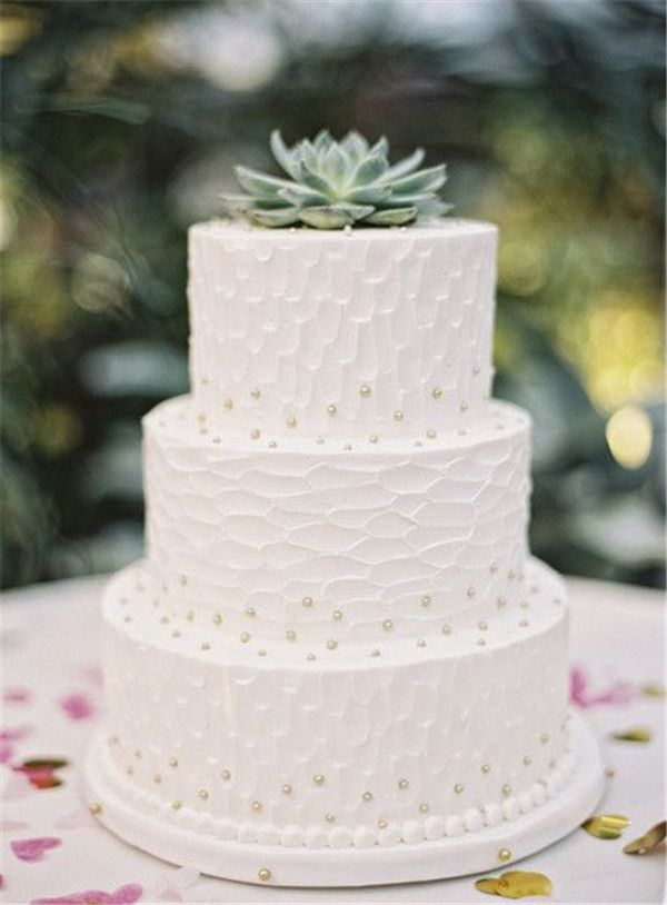 Succulent Wedding Cakes   Succulents, together with wedding cakes always make an interesting match for the big day. Very asymmetrical in size, form and appearance, these plants bring something quite different to a cake arrangement and it symbolizes the happiness and eternity of your coming married life.