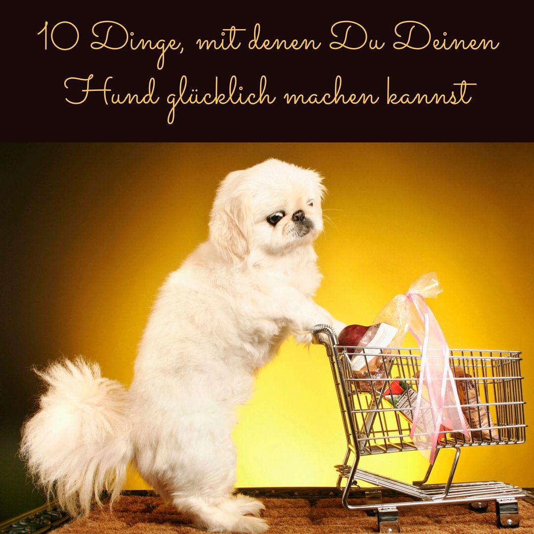 Den Hund glücklich machen - meine Top 10 Liste | Hunde