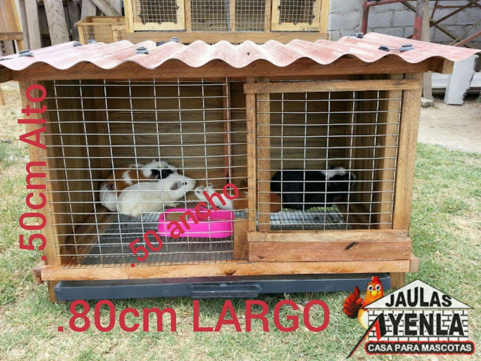 CASA PARA CUY Casas para Conejo Pinterest