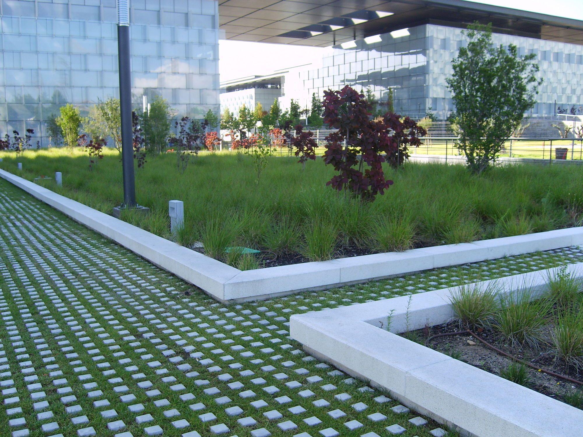 Concrete Paver Draining For Public Spaces Checker Block Escofet Concrete Pavers Outdoor Gardens Grass Pavers