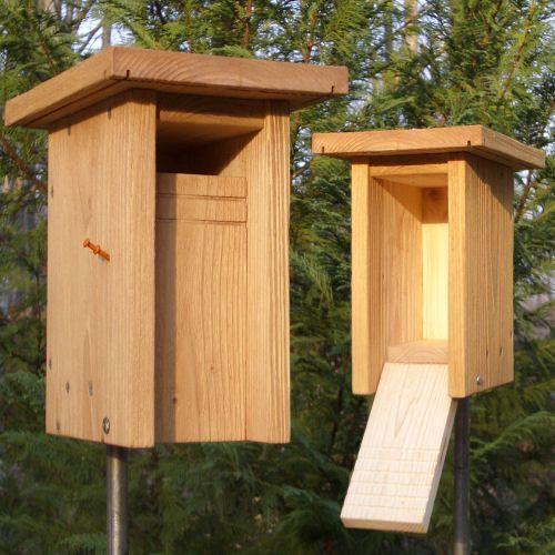 nestbox plans for bluebirds