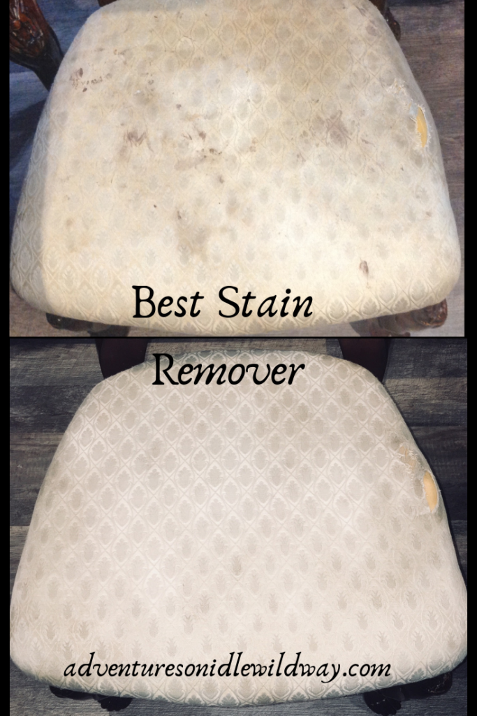 Best Stain Remover | Even removes dog urine and set-in stains! #setinstains