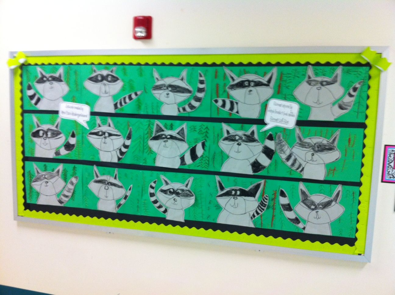 Apex Elementary Art Raccoons