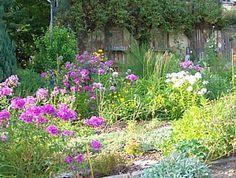 Fancy Kr utergarten anlegen und gestalten Flowers Kr utergarten in Art des Cottagegarten
