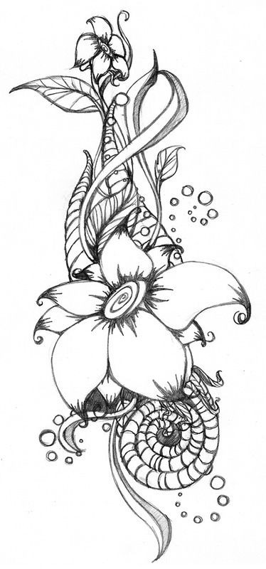 How To Draw Flowers Http Sosyaltavuk Blogspot Com Tr Flower
