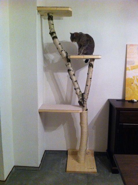 so einfach zu bauen und stilvoll noch dazu die katze freut sich allemal natur katzen. Black Bedroom Furniture Sets. Home Design Ideas