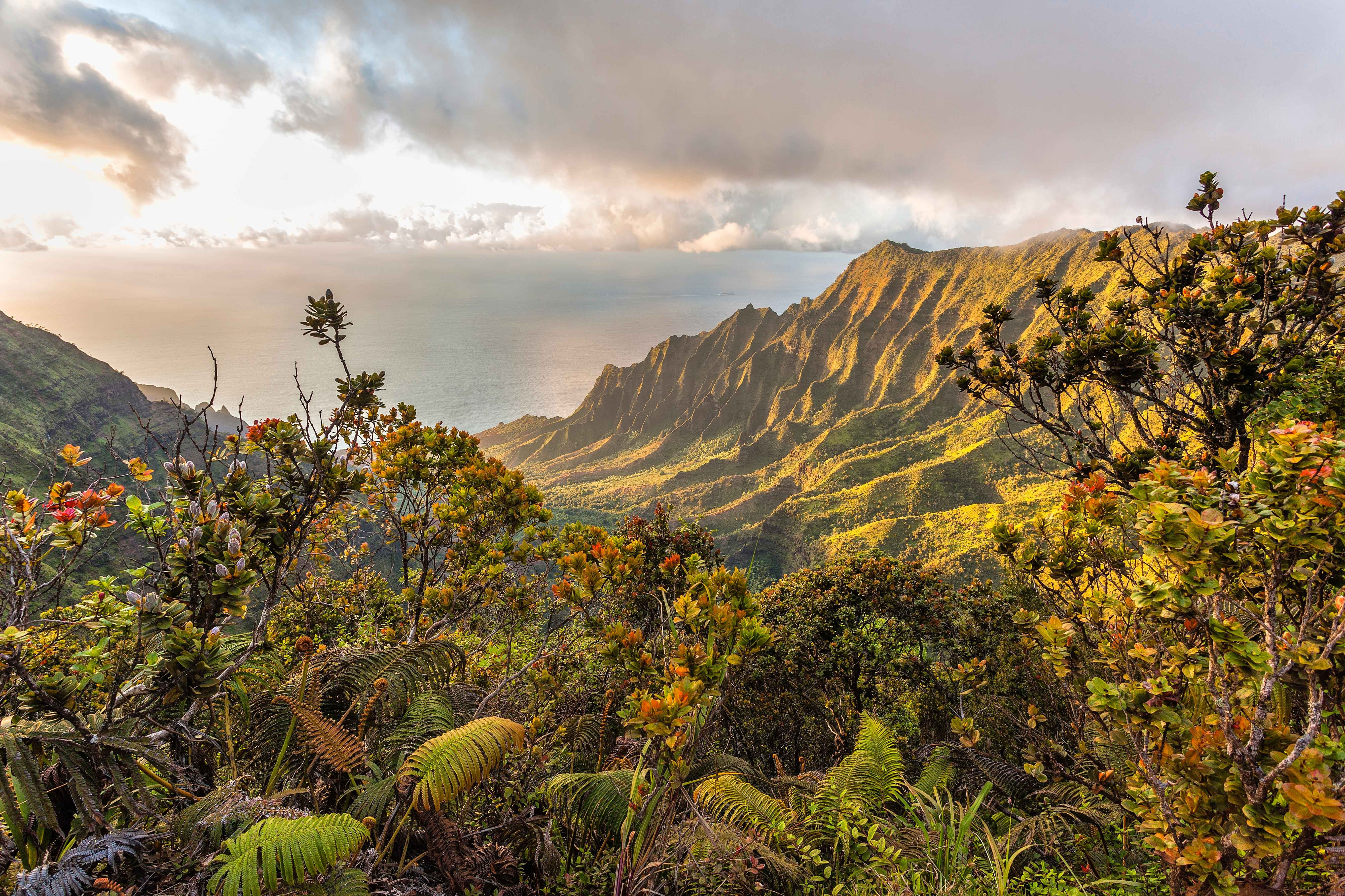 Hawaii for first-timers: how to choose an island | Hawaii