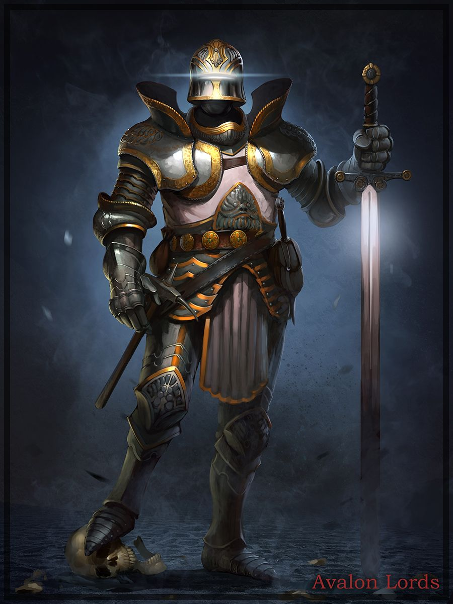 Paladin Knight by Cynic-pavel.deviantart.com on @deviantART   Paladin, Concept art characters ...