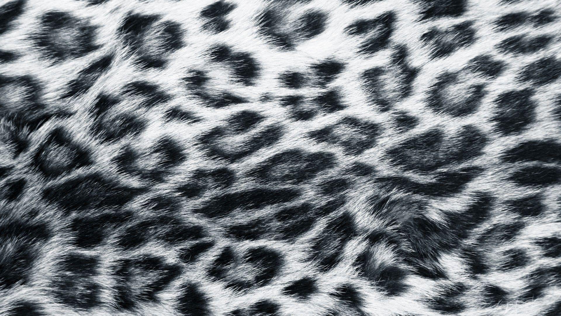 Leopard wallpaper.