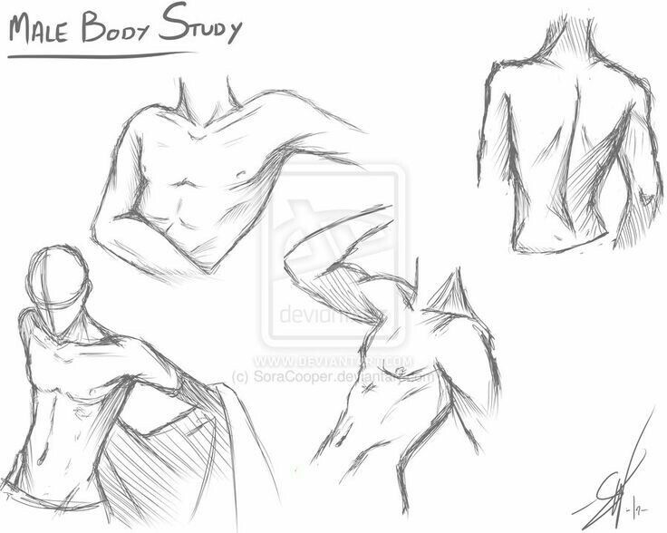 Male Body Study Text Anime Boy Guy How To Draw Mangaanime How