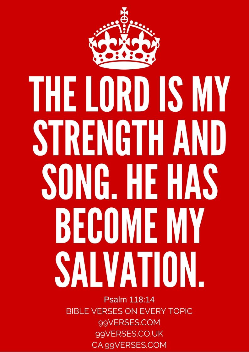 Bible Study: Making God Your Strength in Weakness ...