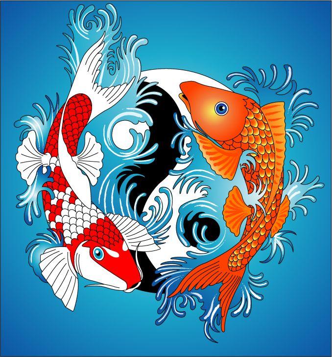 Koi carp yin yang by jonswinn on deviantart inspiration for Koi yin yang