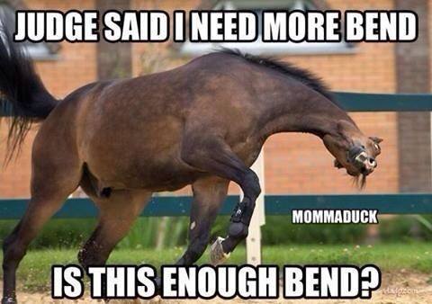 Omg the frustration of a horse who doesn't bend when you want them to!