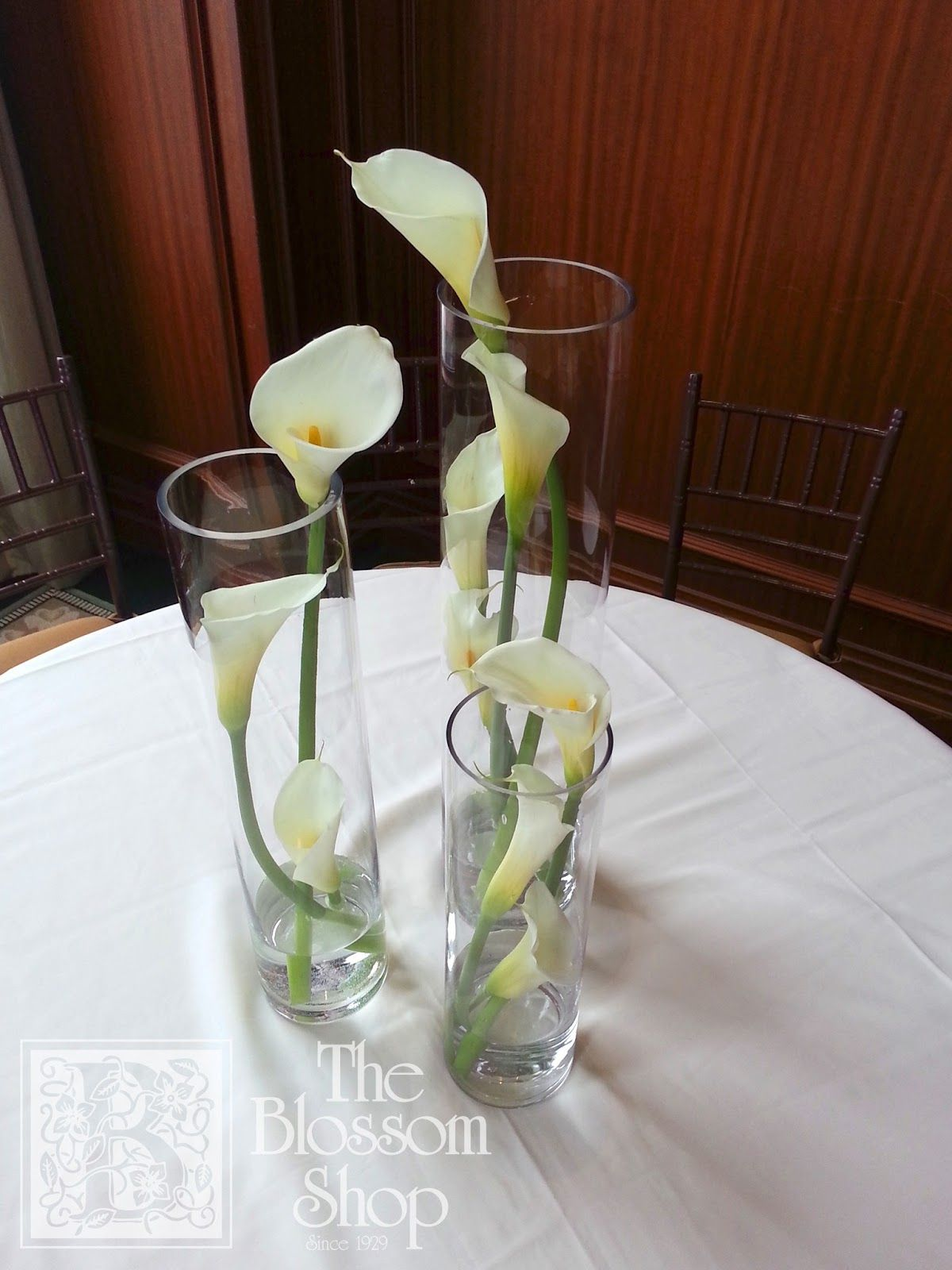 Simple modern grouping of graceful calla lilies inside cylinder simple modern grouping of graceful calla lilies inside cylinder vases reviewsmspy