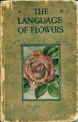 Vintage Flower Book Cover : The language of flowers old book a b i d e w t h