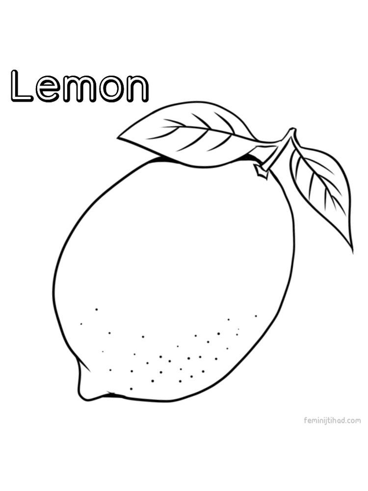 Printable Lemon Coloring Images Free Fruit Coloring Pages Coloring Pages Lemon Pictures