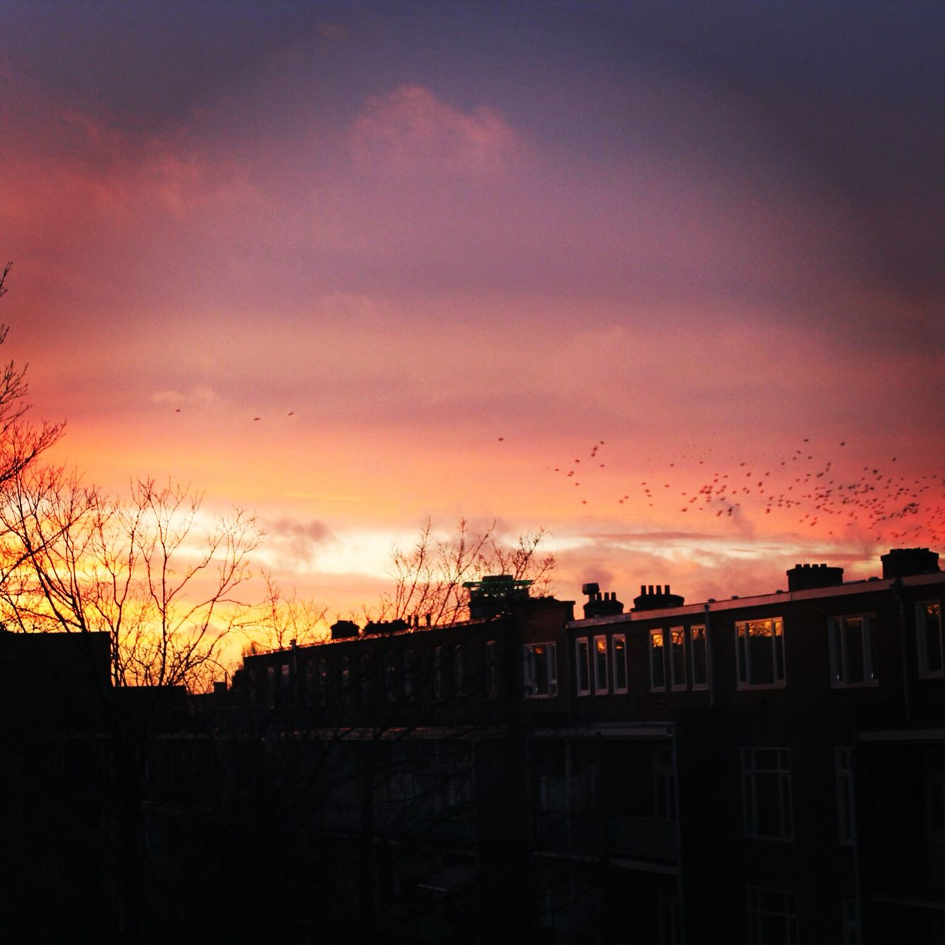 Truly mystical sunset at Amsterdam
