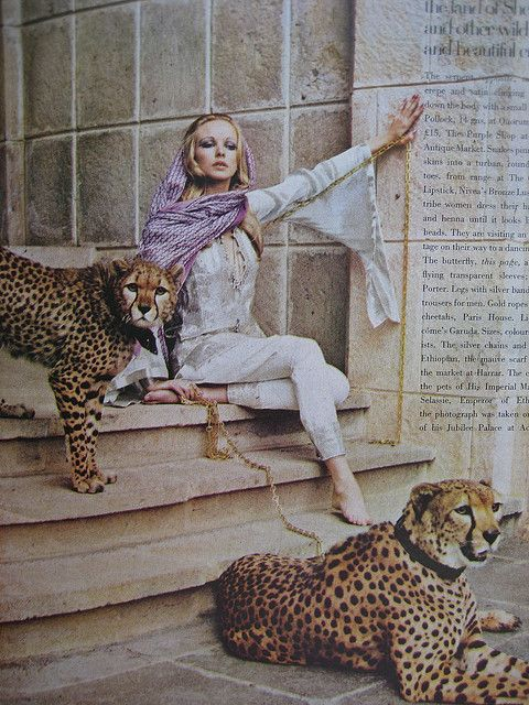 Woman Cheetahs 1960 S Vogue Uk Vogue Photography Seventies Fashion