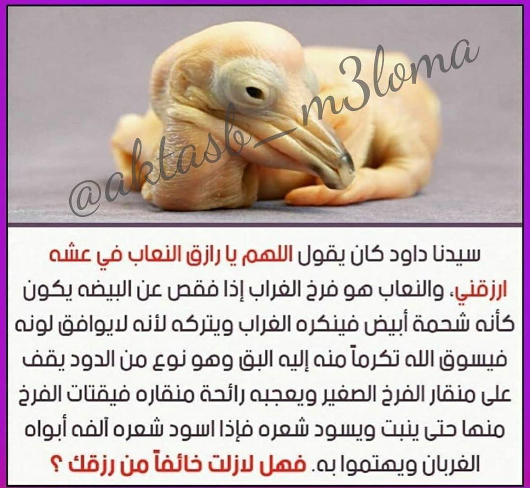 Aktasb M3loma Posted On Instagram Jul 7 2020 At 3 43pm Utc Instagram Life Quotes