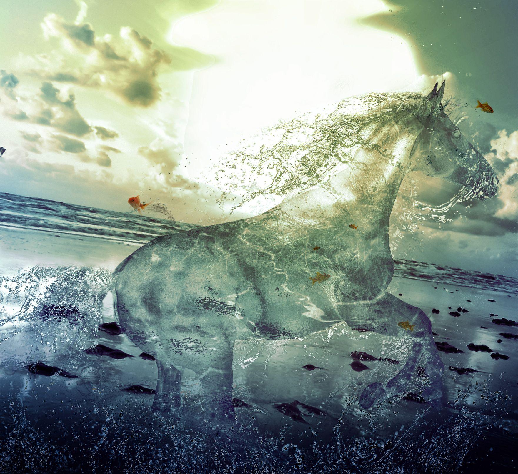 Equine Horse Art Ceramic Accent Tile 8 x 8 Kitchen Shower Backsplash Shadow Dancer by Kim McElroy
