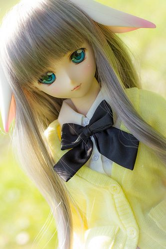Mei-chan. Dollfie dream Airi from queen's blade