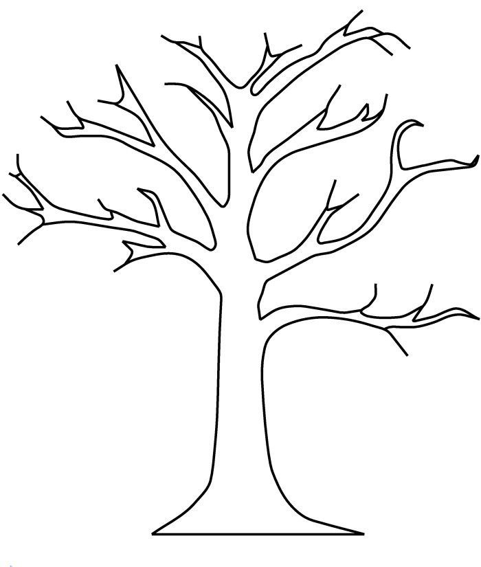 Printable Tree without Leaves Coloring Page | Tree coloring ...