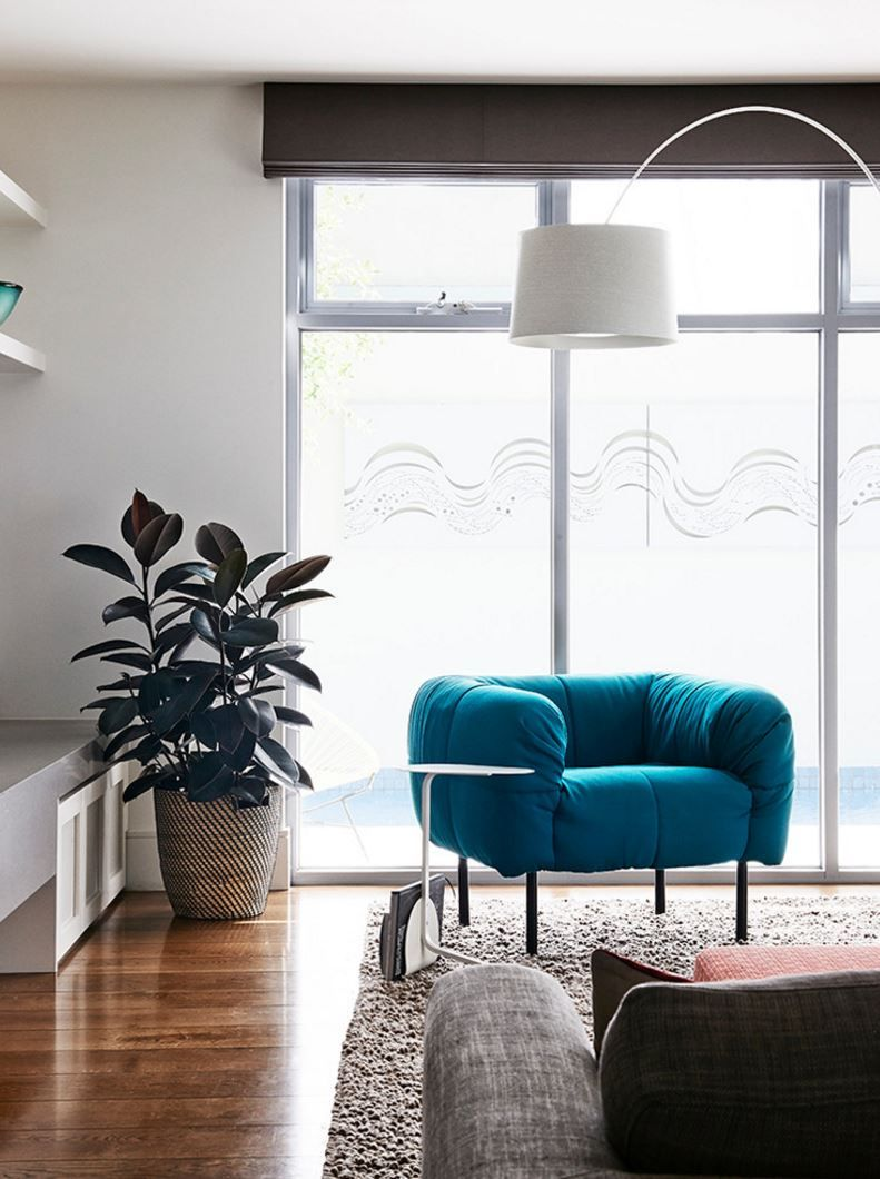 modern chairs for living room%0A    AirPurifying Plants for Your Interior  Rubber PlantModern Living