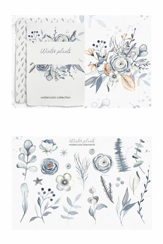 Winter plants watercolor