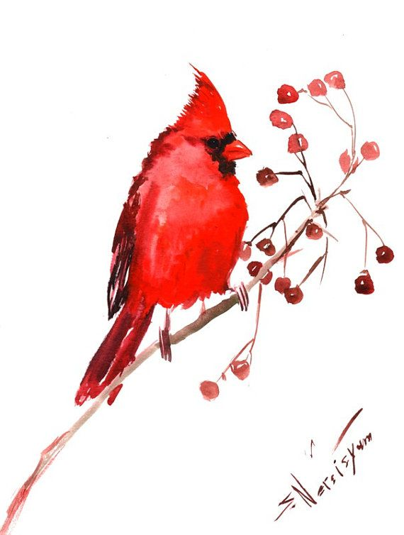 Northern Cardinal Original Watercolor Painting 9 X By
