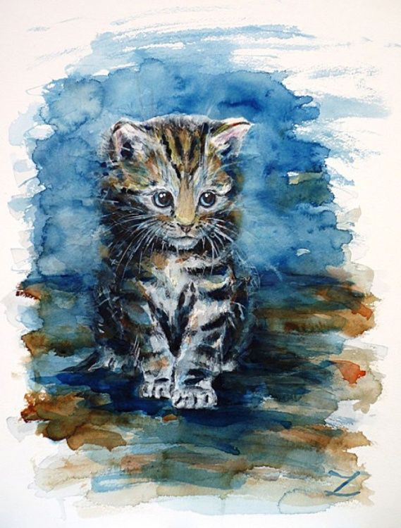 Timid Kitten Watercolor Cat Cat Art Art