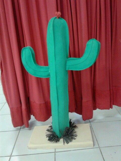 cactus de fomi