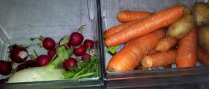 Fructosearme Gemüsesorten