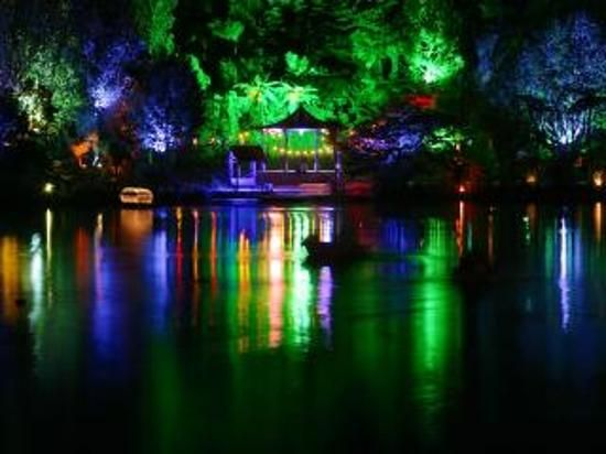 the Christmas lights at Pukekura Park New Plymouth - The Christmas Lights At Pukekura Park New Plymouth Travel <3