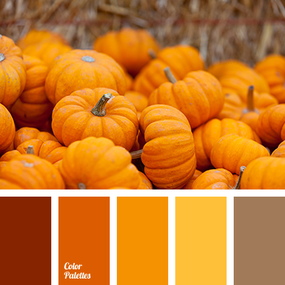 Shades Of Orange bright orange, color of pumpkin, color palette for halloween, dark