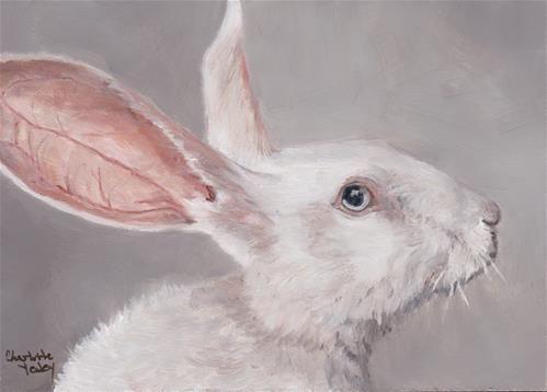 Fine Art Acrylic Rabbit Paintings