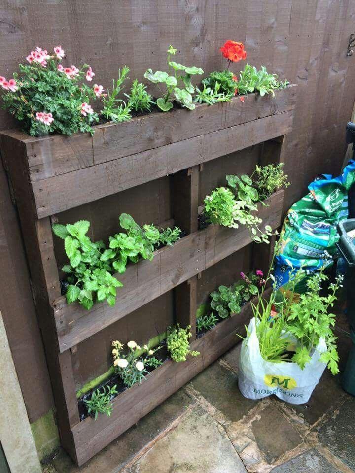 Vertical garden | Wood pallet planters, Vertical garden ...