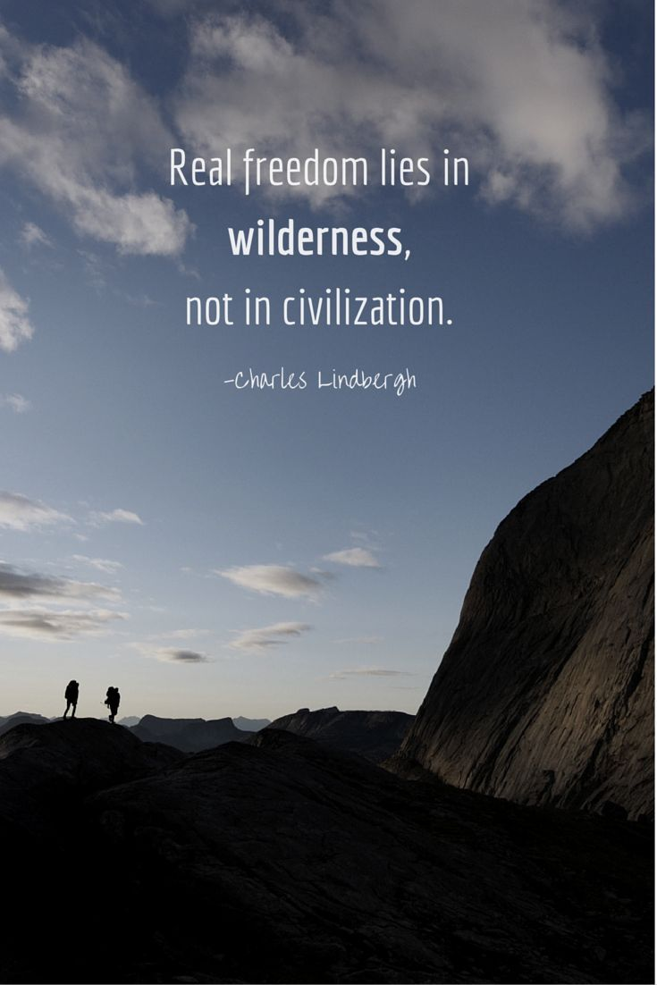 Edward Abbey - Wilderness is not a luxury but a necessity ... |Into The Desert Quotes