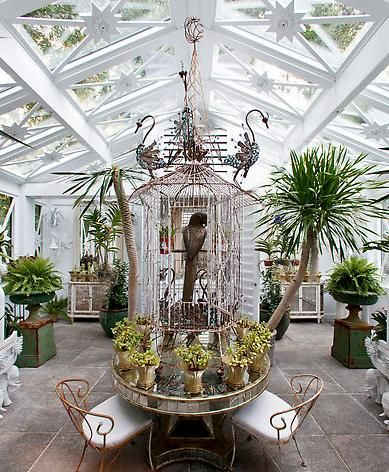 17 Best 1000 images about Winter Gardens on Pinterest Gardens