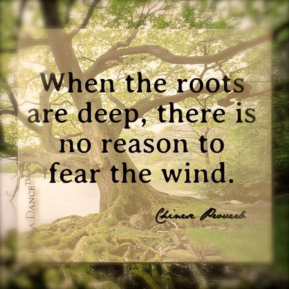 When the roots are deep, there is no need to fear the wind.