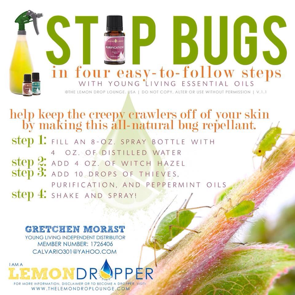 ESSENTIAL OILS Bug repellent IT DOES A BODY GOOD