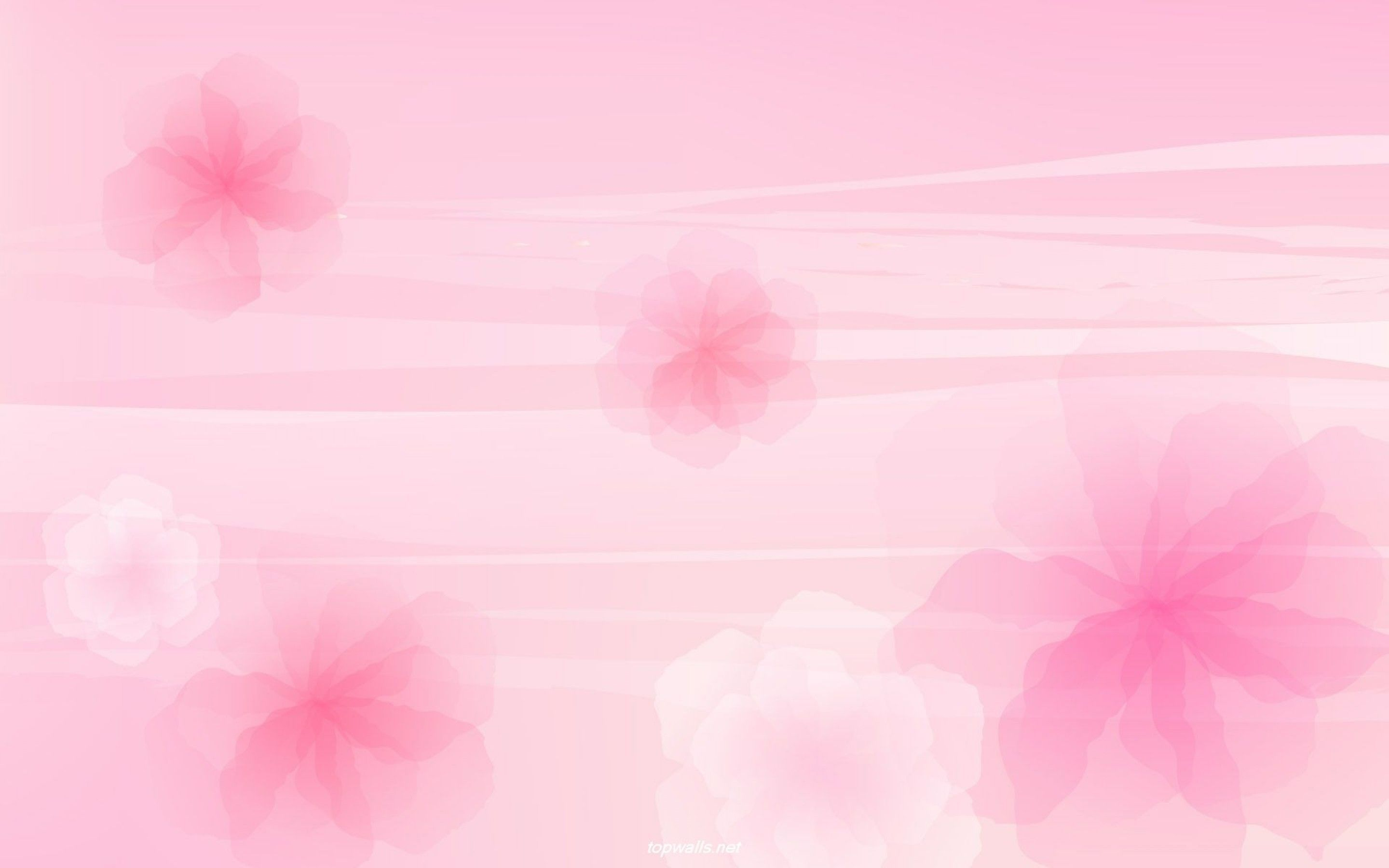 Hd Light Pink Backgrounds Pink Flowers Background Pink Wallpaper Colour Pink Background Images
