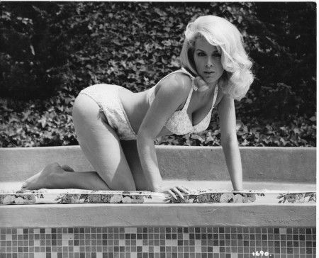 Inger stevens undressed, lily stockings transsexual