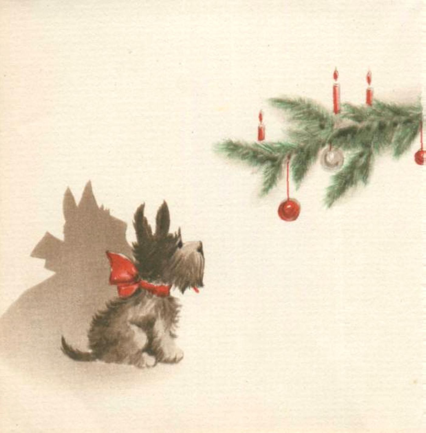 Scotties At Christmas Christmas Pinterest Julkort