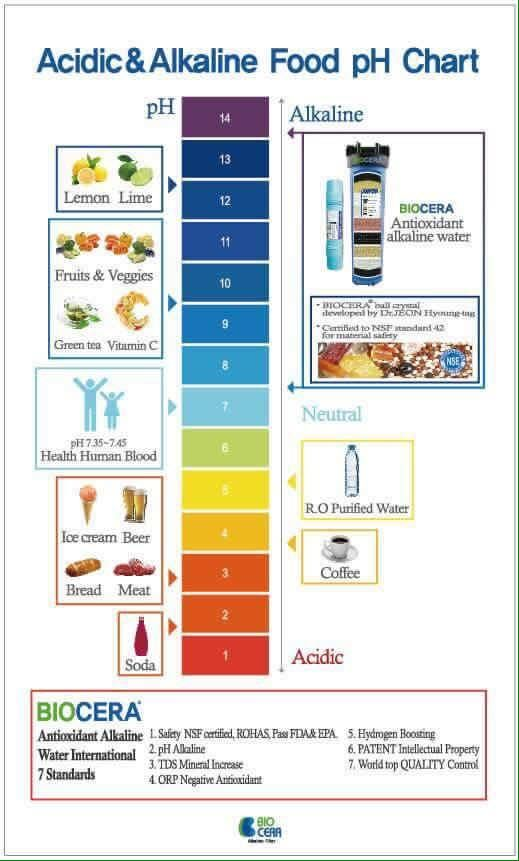 Acidic and #Alkaline #Food pH Chart by #Biocera why Alkaline