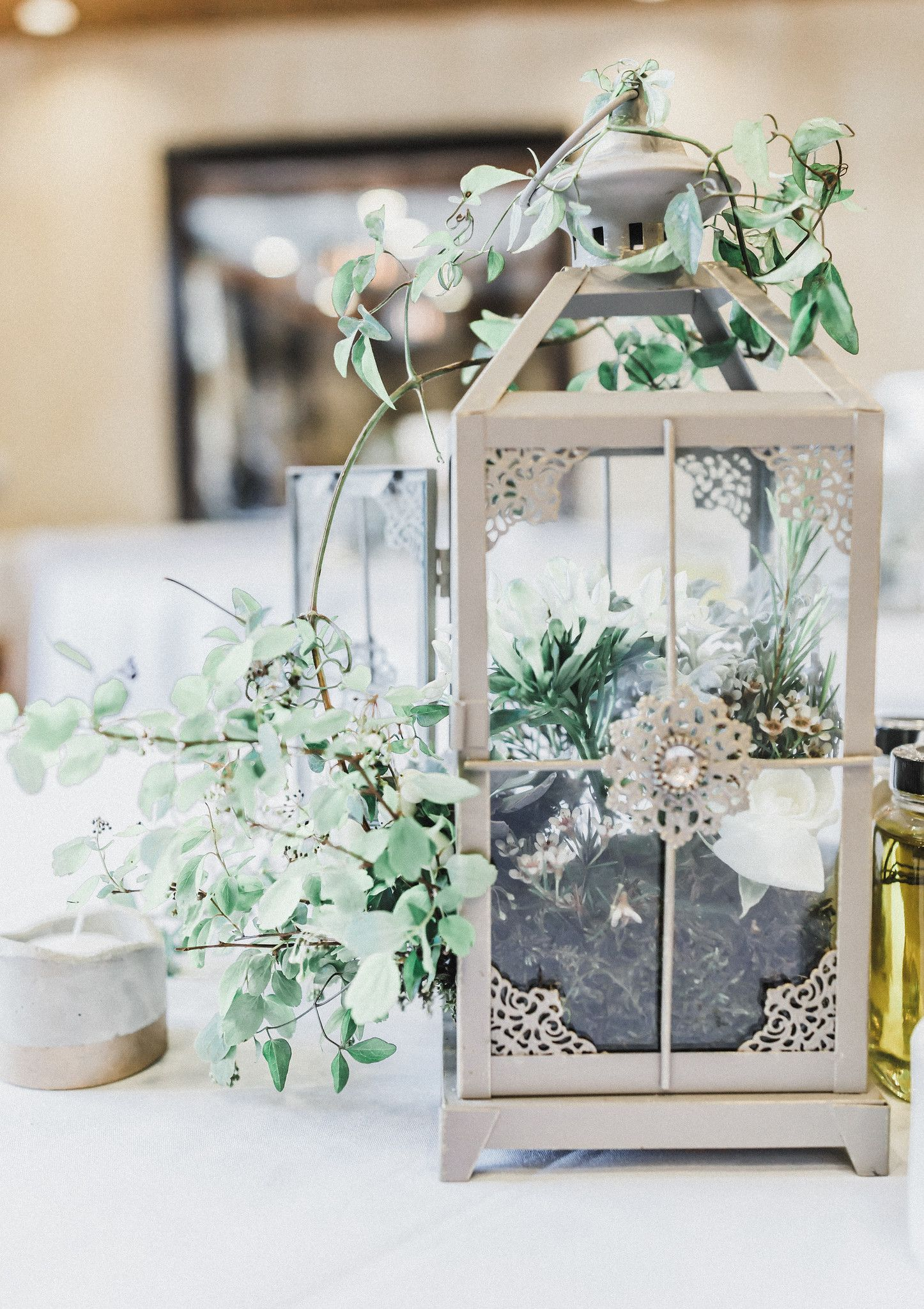Succulent wedding centerpieces olive oil wedding favors greenery ...