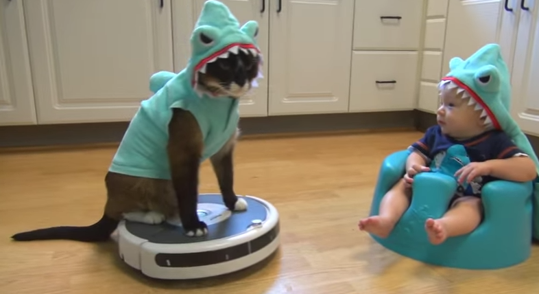 Roomba Riding Shark-Cat Entertains An Adorable Shark-Baby