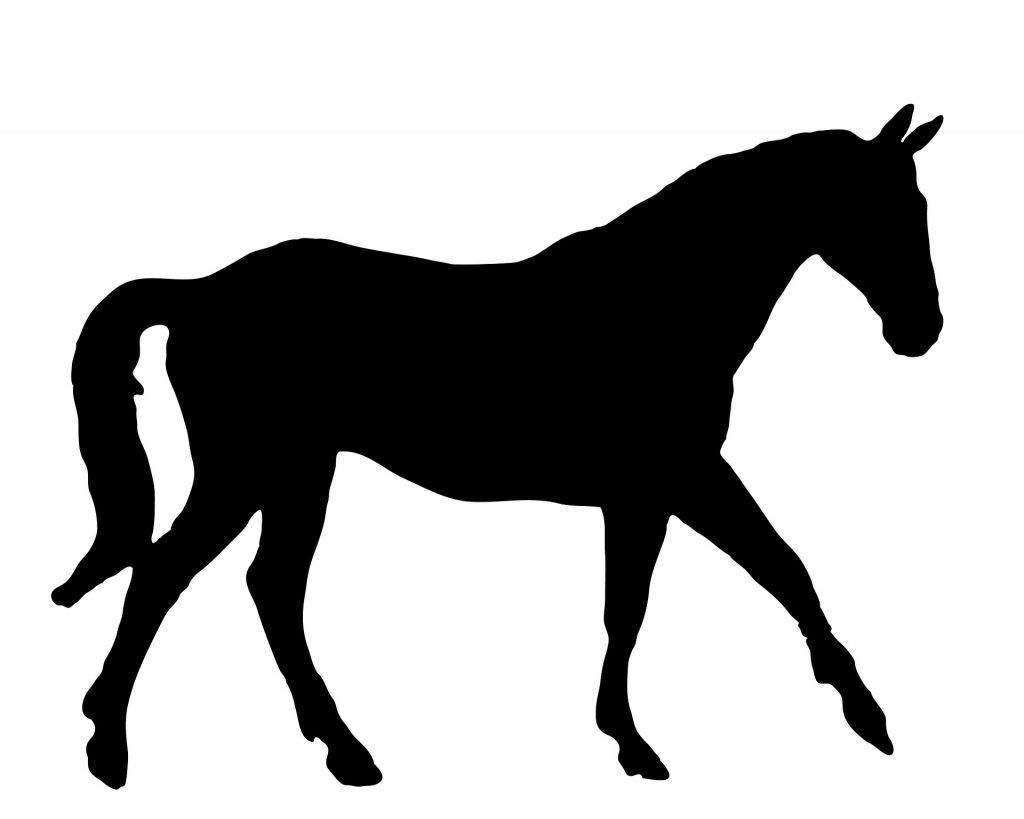 Best Horse Joint Supplement Reviews What To Buy Horse Silhouette Horse Stencil Horses