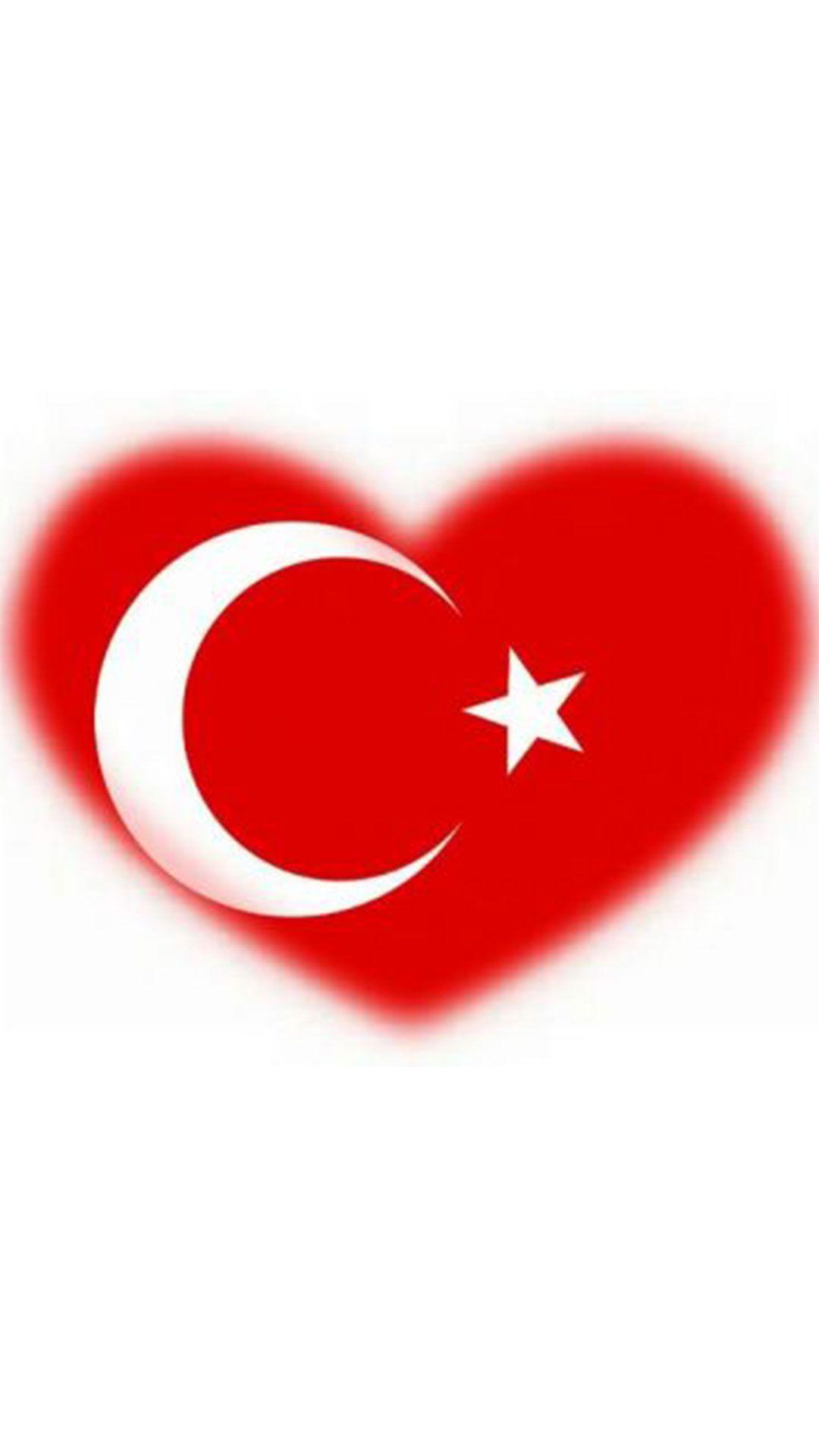 Kalpli Türk Bayrağı Resimleri çizimler Art Design Ve Company Logo