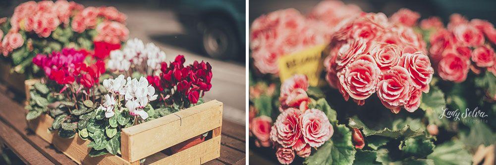 Viernes de Foto: Un paseo por Barcelona y por el Market Lost. Floristería. Flores. Flowers. Lady selva fotografia
