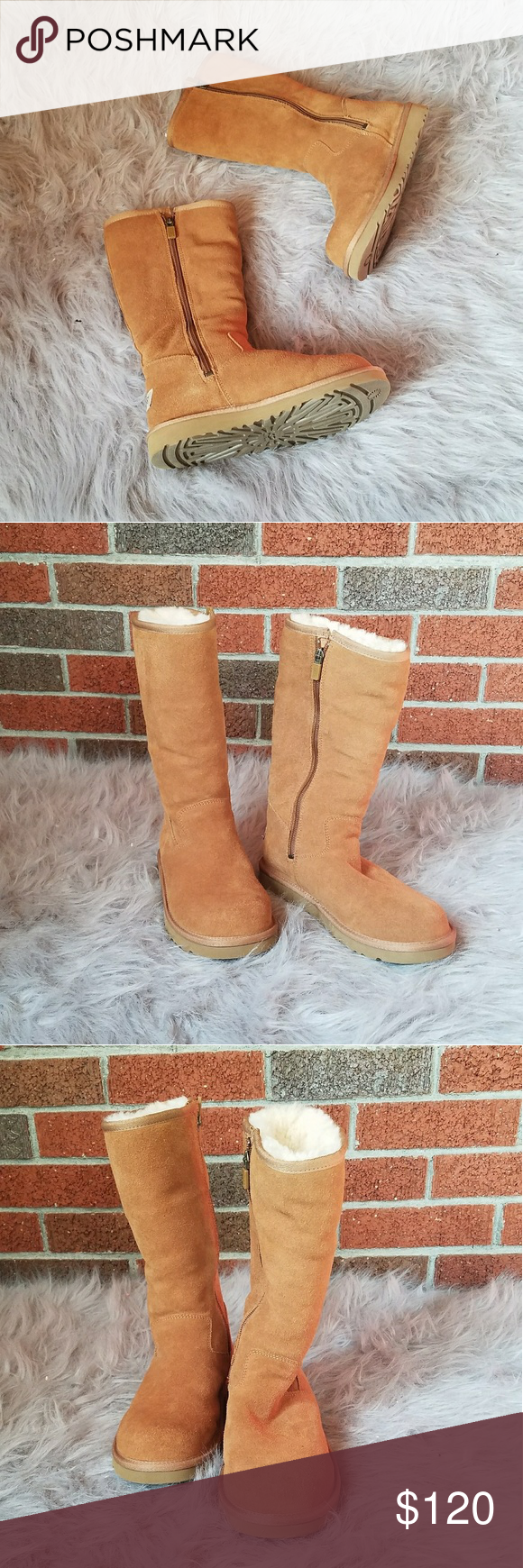 beddb2fbd9f UGG Abree Tall Chestnut Boot with Side Zipper NWOT Brand new never ...